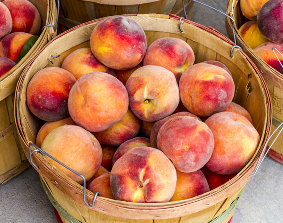 Organic and pesticide free peaches
